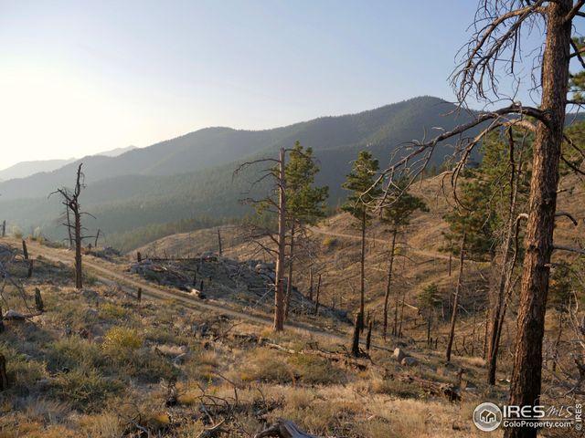 560 Wild Turkey Trl, Bald Mountain, 80302, CO - photo 0