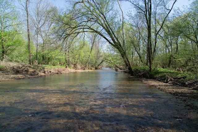 10739 Blue Springs Hollow Rd, Bon Aqua, 37025, TN - photo 0