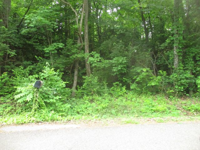 Listing photo 1 for Medlin Heights Rd