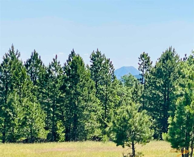 Property photo 1 featured at tbdtract3 Oak Tbd Niobrara, Whitewood, SD 57793