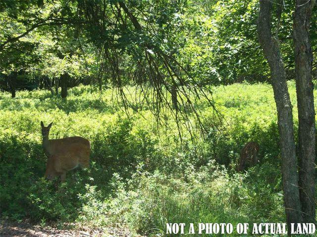 117 Seegar Path, Penn Forest Township, 18210, PA - photo 0