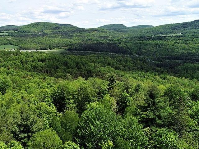 Property photo 1 featured at 0 Last Rd, Cabot, VT 05647